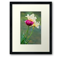 Tulips by the Water's Edge Framed Print