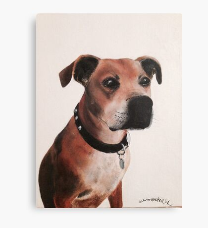 Staffordshire bull terrier painting oil on canvas Canvas Print