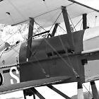 Royal Aircraft Factory SE.5a by Robert Gipson