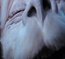 Falcor laughing Sticker