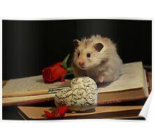 Hamster write a poem Poster