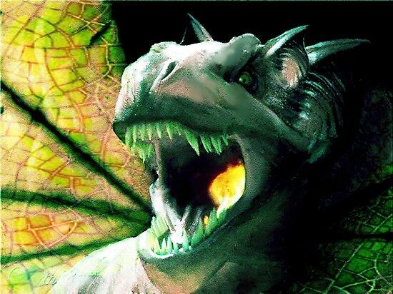 The heart of a dragon by John Ryan
