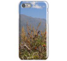 Landscape mountain iPhone Case/Skin