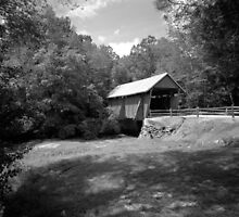 Covered Bridge in the Carolinas by Bill Wetmore
