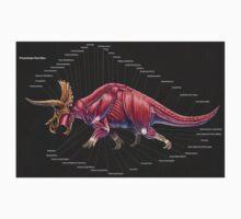 Triceratops Horridus Muscle Study Kids Tee