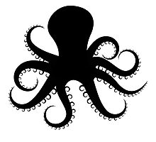 Octopus Silhouette  Photographic Print