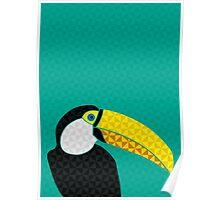 Tucano Poster
