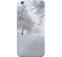 Frost Bite iPhone Case/Skin