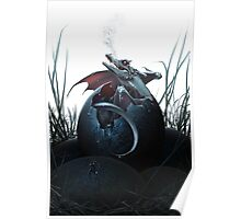 Dragon Hatchling Poster