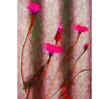 My Surreal Hot Pink Dandelions Photographic Print