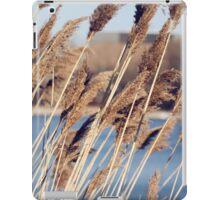 bulrushes growing in a marsh iPad Case/Skin