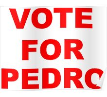 Vote For Pedro Poster