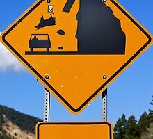 Watch for falling cows by CROBrien