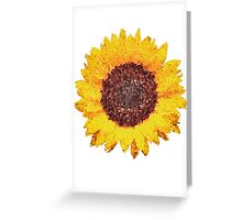 SUN IN FLOWER Greeting Card