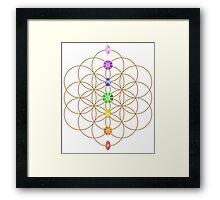 Flower Of Life - Metaphysical Framed Print