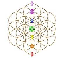 Flower Of Life - Metaphysical Photographic Print