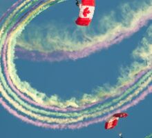 The Canadian Forces Skyhawks Sticker
