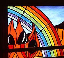Sturts Desert Pea by Judy Woodman