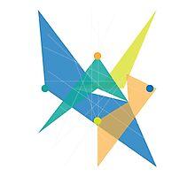 Abstract Rhombus Photographic Print