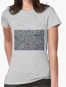 Sea Shells on Sanibel I Womens Fitted T-Shirt