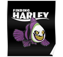 finding Harley  Poster