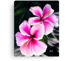 Bright Pink Hibiscus Flowers Canvas Print