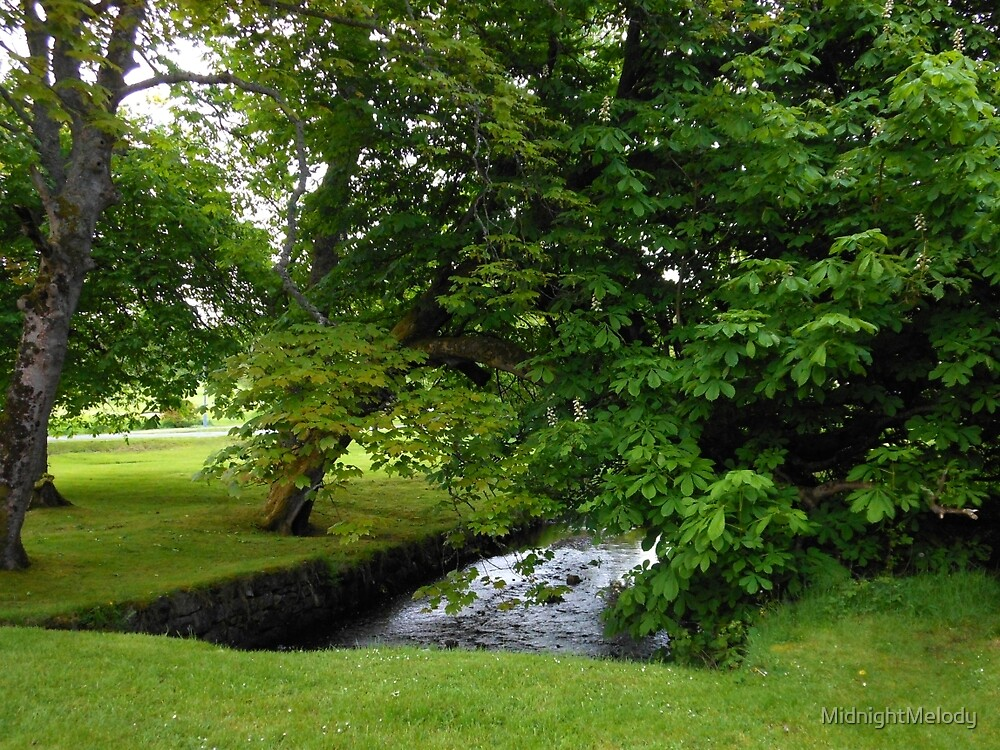 Little Stream in Lews Castle Grounds by MidnightMelody