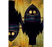 Double Nature Of Owls Photographic Print