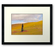 Golden Hill Prairie of Minnesota Framed Print