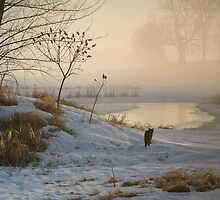 Prowling in the Mist by Jodie Keefe
