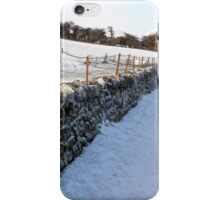 Snowy fenced wall  iPhone Case/Skin