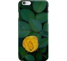 Second Edition iPhone Case/Skin