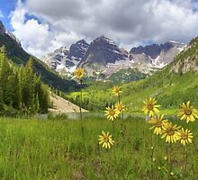 Maroon Bells Images - Sunflowers at Maroon Lake on a July Morning by RobGreebonPhoto