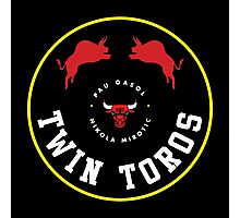 Twin Toros Photographic Print
