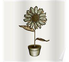 Flower & Pot IV Poster
