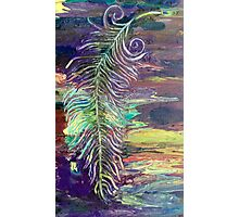 Falling Feather Photographic Print
