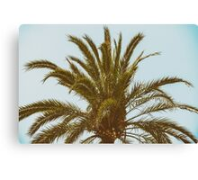Green Palm Tree On Blue Sky Canvas Print