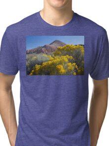 Blooming Sage Tri-blend T-Shirt