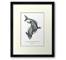 Southern Right Whales - Fight for the Bight Framed Print