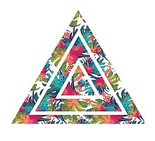 Floral Triangle Photographic Print
