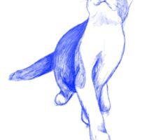 Kitten study in blue Sticker