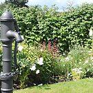Water Pump & Well Garden by CreativeEm