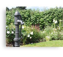 Water Pump & Well Garden Canvas Print
