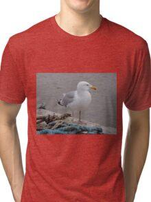 Mighty Seafarer Tri-blend T-Shirt