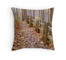 Leaf Lined Path.....  ^ Throw Pillow