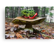 Stepping Out on the Toad Stool Canvas Print