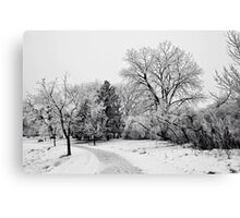Blanket of Frost Canvas Print