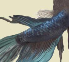 Betta fish in blue Sticker