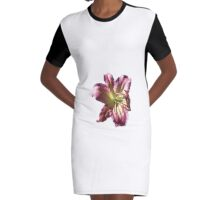 Colourful Lilium Flower. Print, T-shirts & much more. Graphic T-Shirt Dress