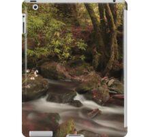 A river runs through it  iPad Case/Skin